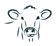 romany herefords icon